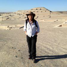 15-ho visitato vari scavi